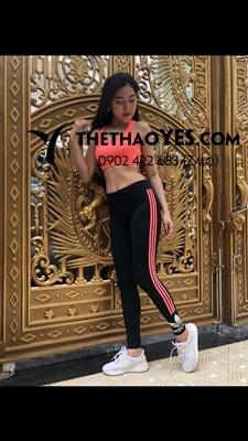 quần áo thể thao tập gym nữ