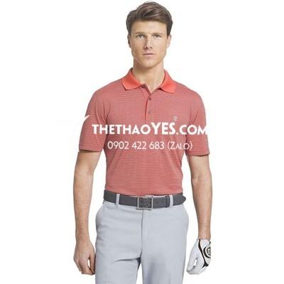 cung cấp áo thun thể thao