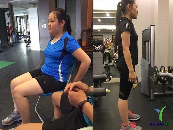 Các nhóm cơ tập gym