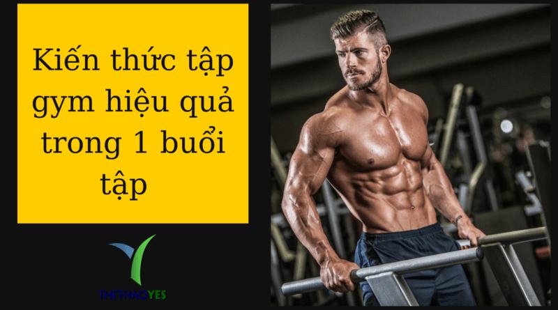 Lịch tập gym